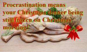 http://procrastinationmeans.com/frozen-christmas/